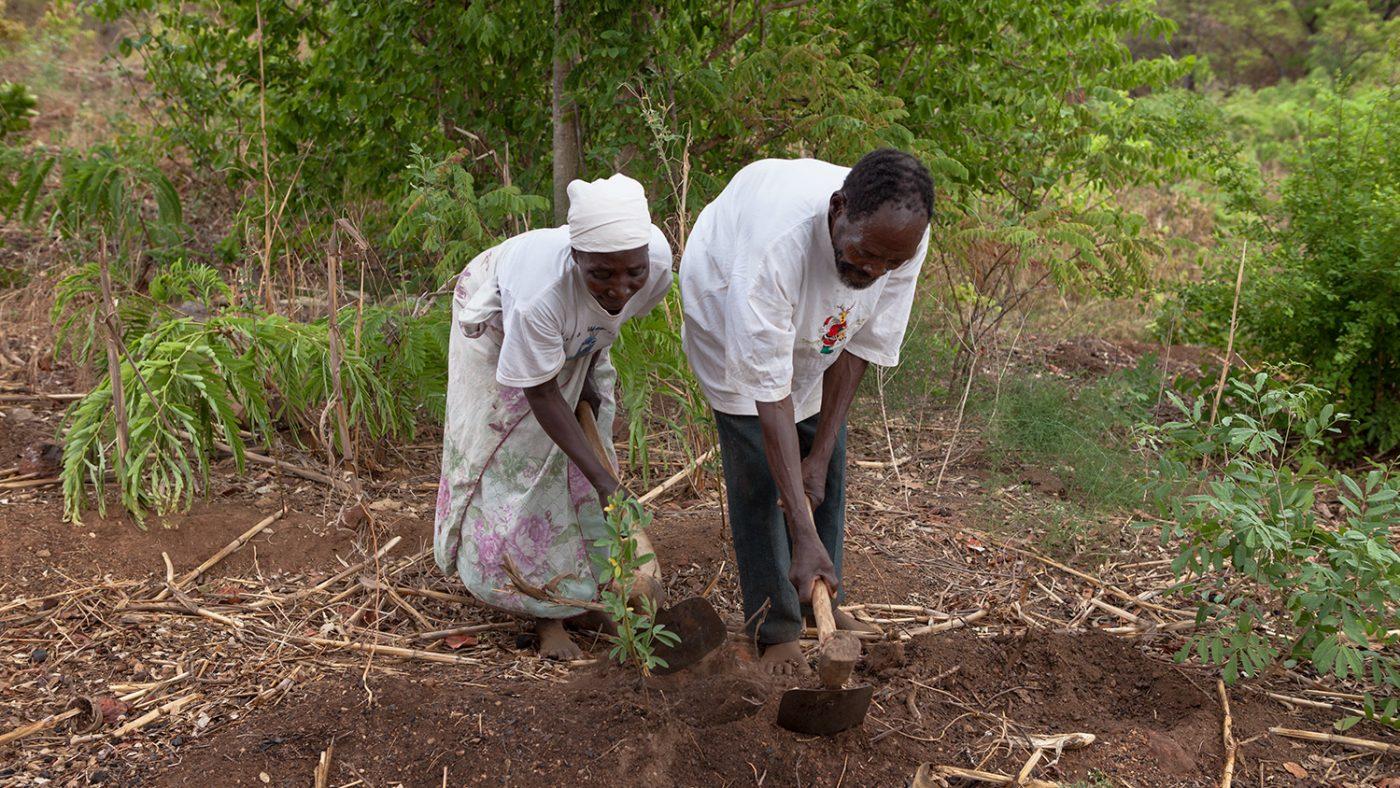 Winesi og kona jobber på markene i nærheten av hjemmet deres.