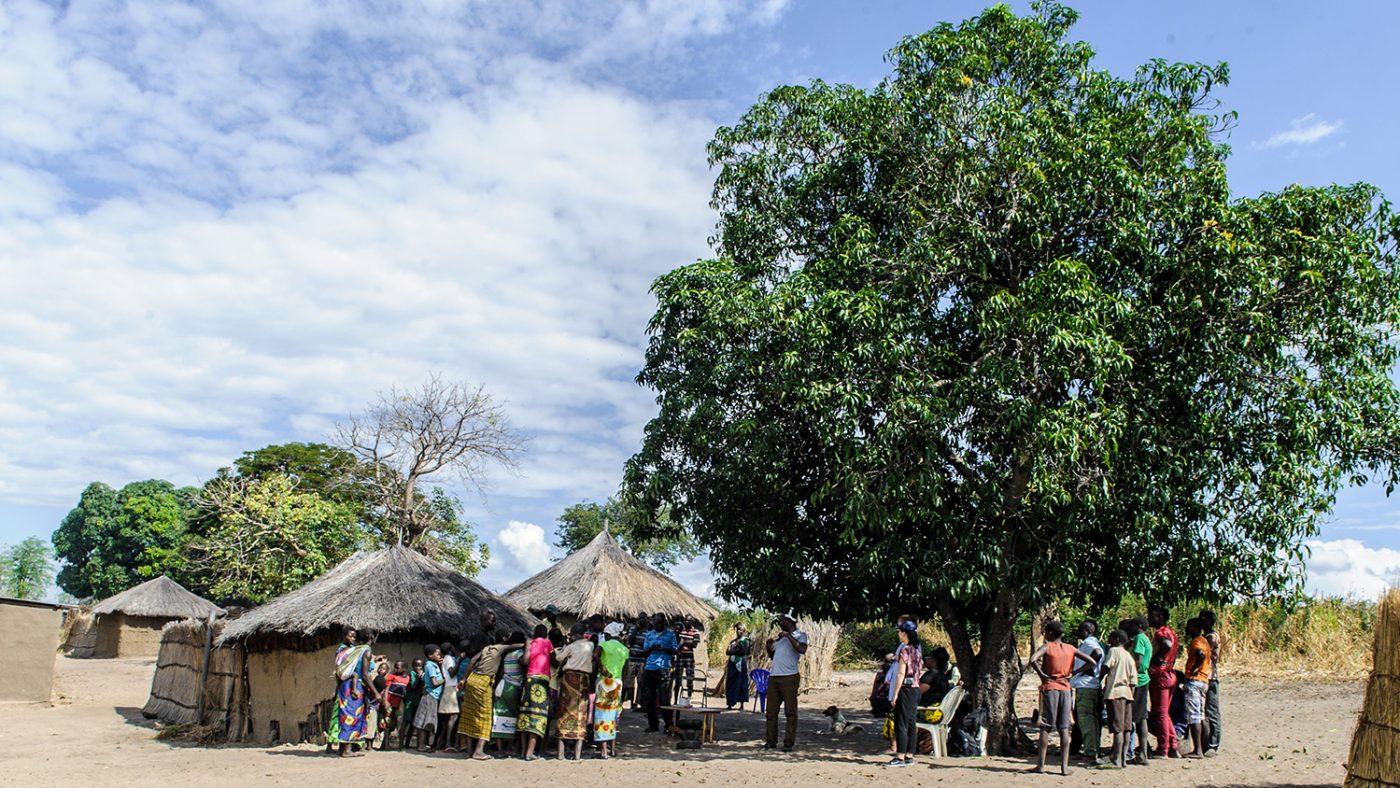 Mennesker i en landsby i Vest-Zambia samles under et tre.