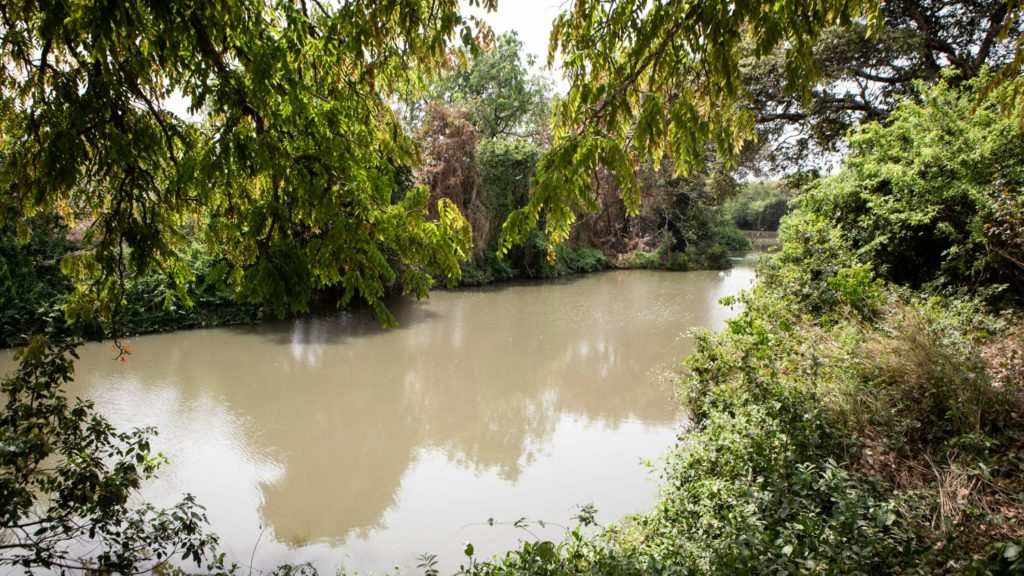 Pru-elva hvor svartfluer oppholder og formerer seg i Asubende, Ghana