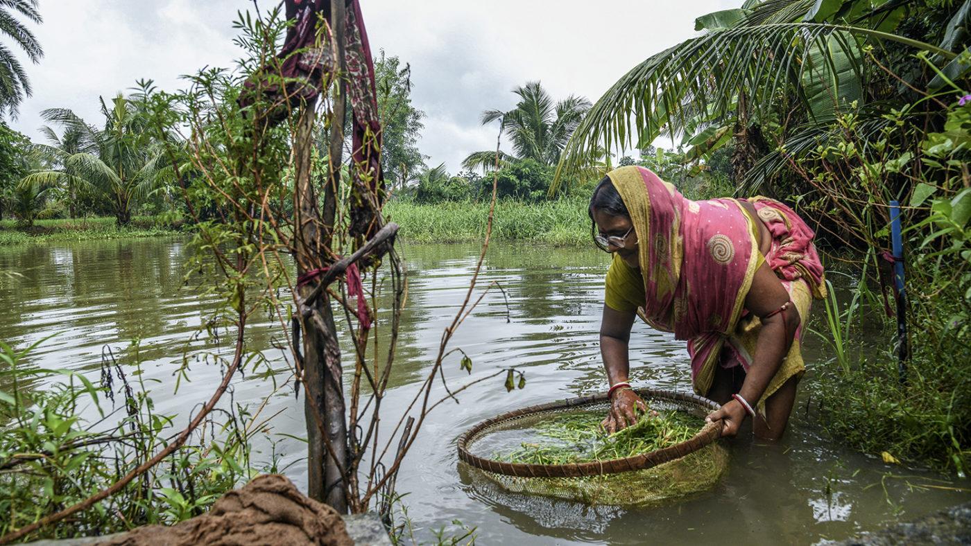 En kvinne fisker i en elv.