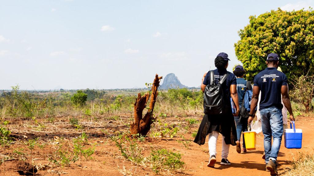 En kartleggingsundersøkelse for elveblindhet gir positive resultater i Mosambik.